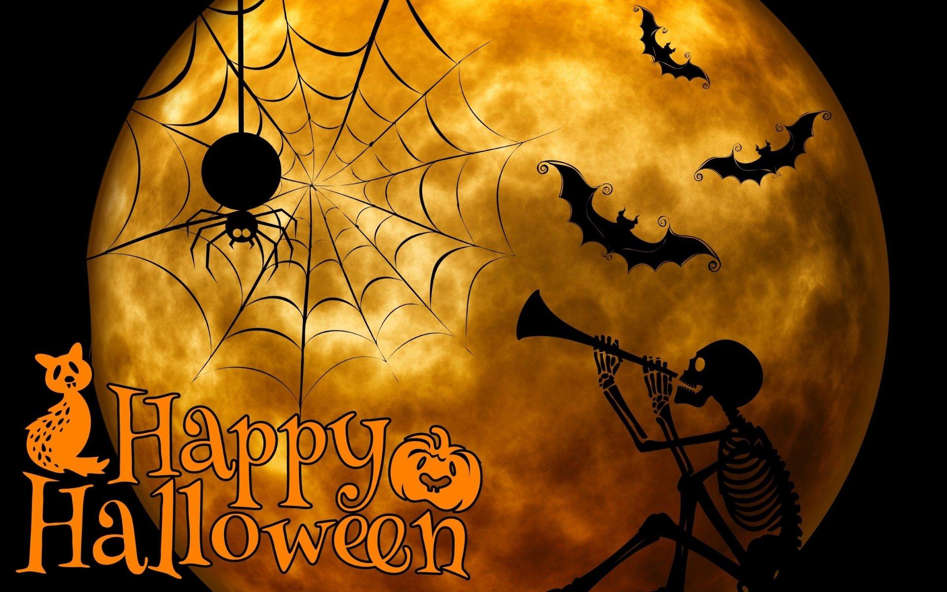 Holiday - Halloween  Spider Skeleton Bat Wallpaper