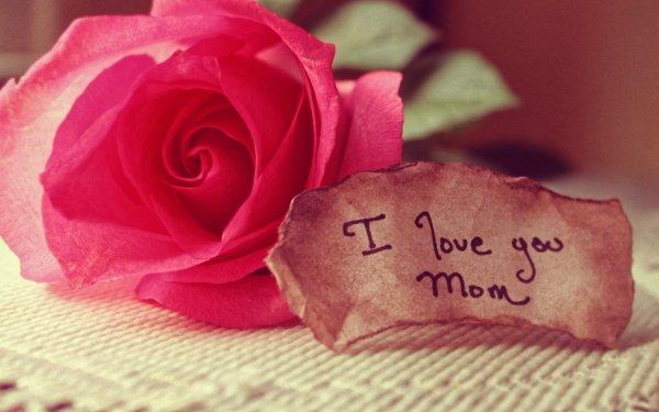 Día festivo Día de la Madre Rosa Parejas Fondo de pantalla HD | Fondo de Escritorio