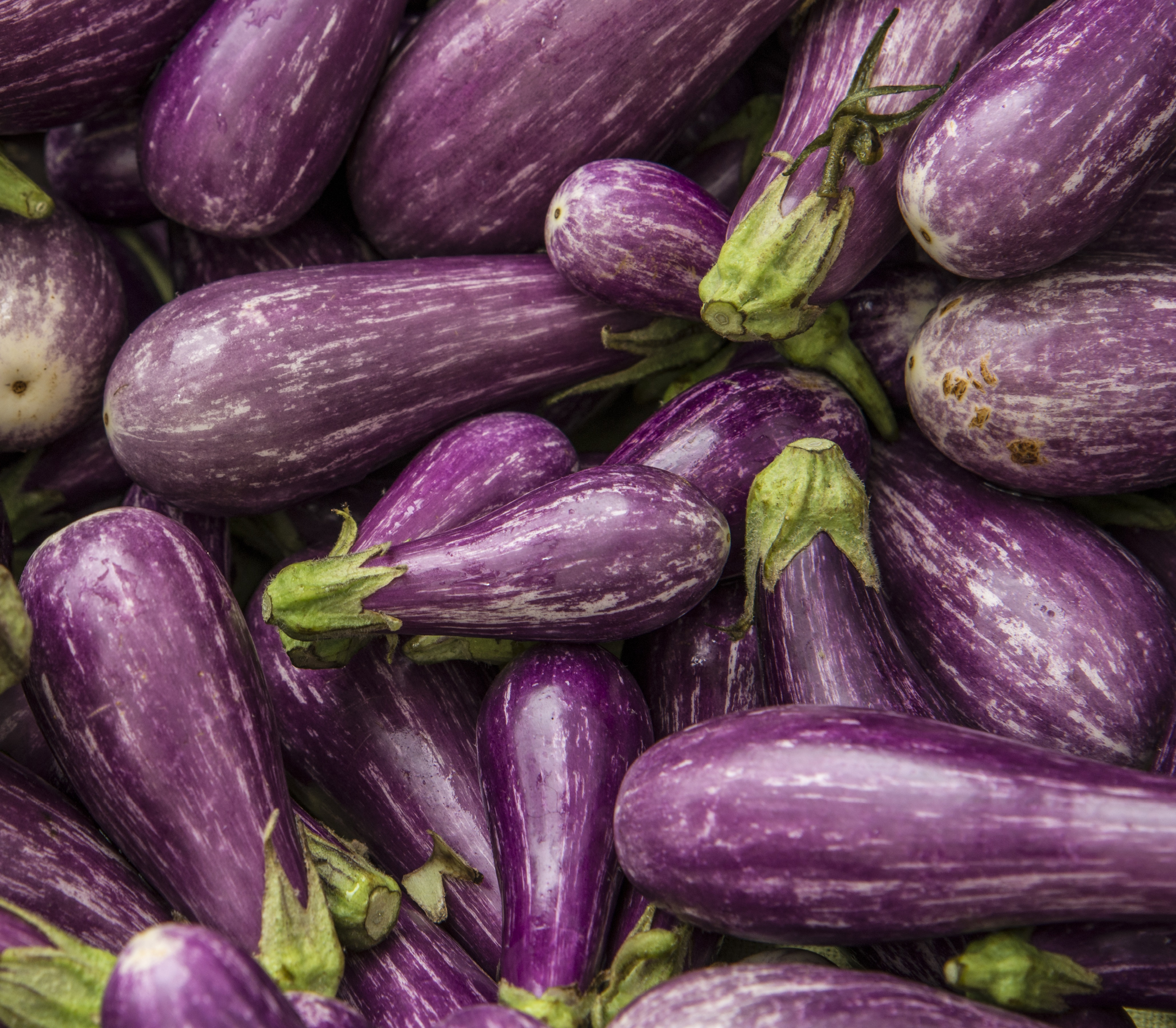 Eggplant 4k Ultra HD Wallpaper And Background Image
