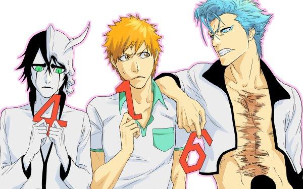 Anime Bleach Ichigo Kurosaki Ulquiorra Cifer Grimmjow Jaegerjaquez HD Wallpaper   Background Image