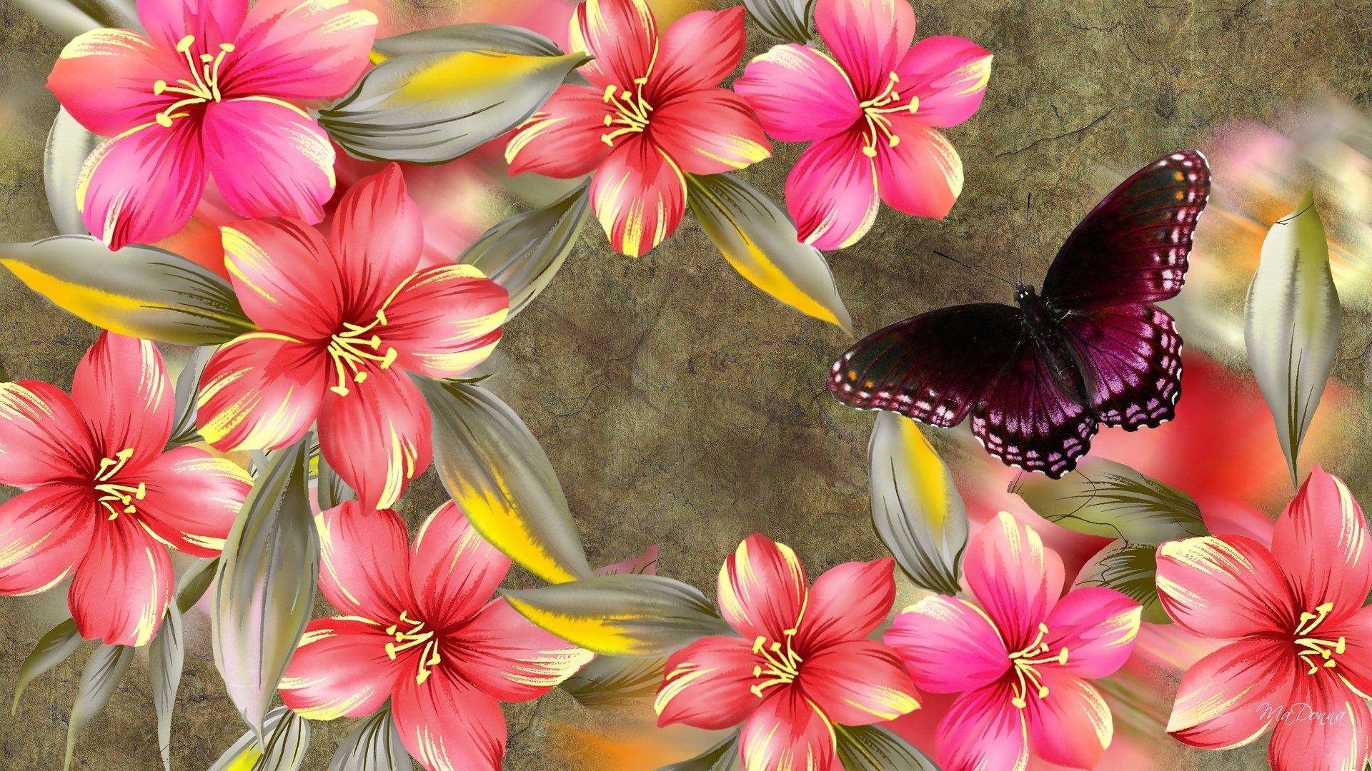 Wallpapers papillon hd le color de fleur x fonds d cran photo 1366x768 - Artistique Fleur Artistique Hibiscus Printemps Papillon Pink Pourpre Fond D Cran