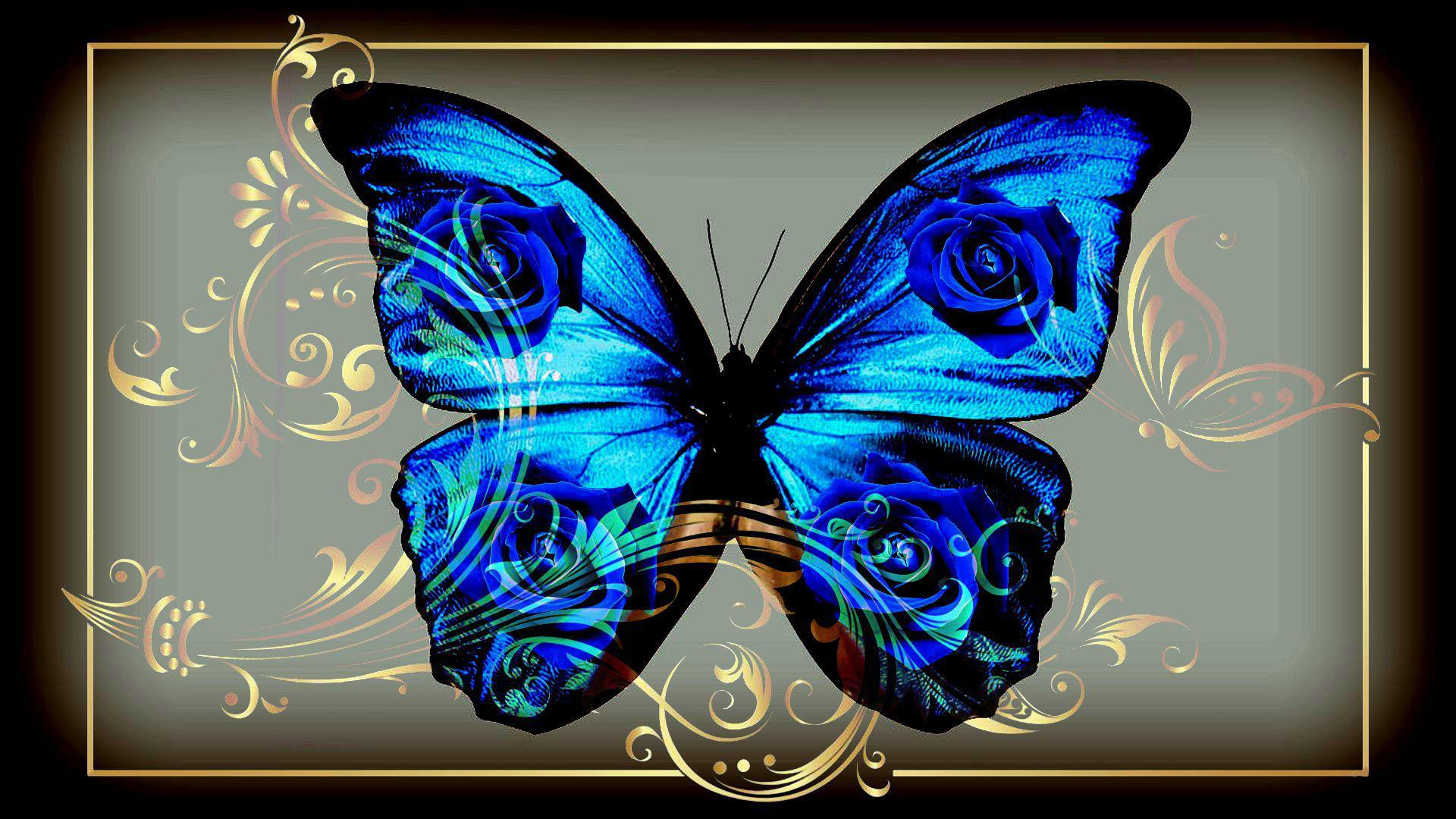 Blue Butterfly Full HD Wallpaper And Background Image