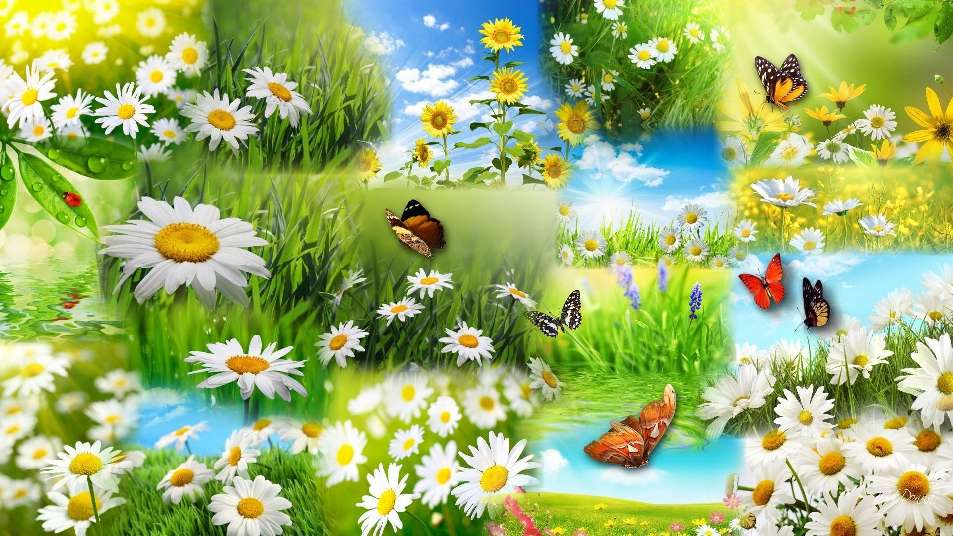 spring collage computer wallpapers - photo #13