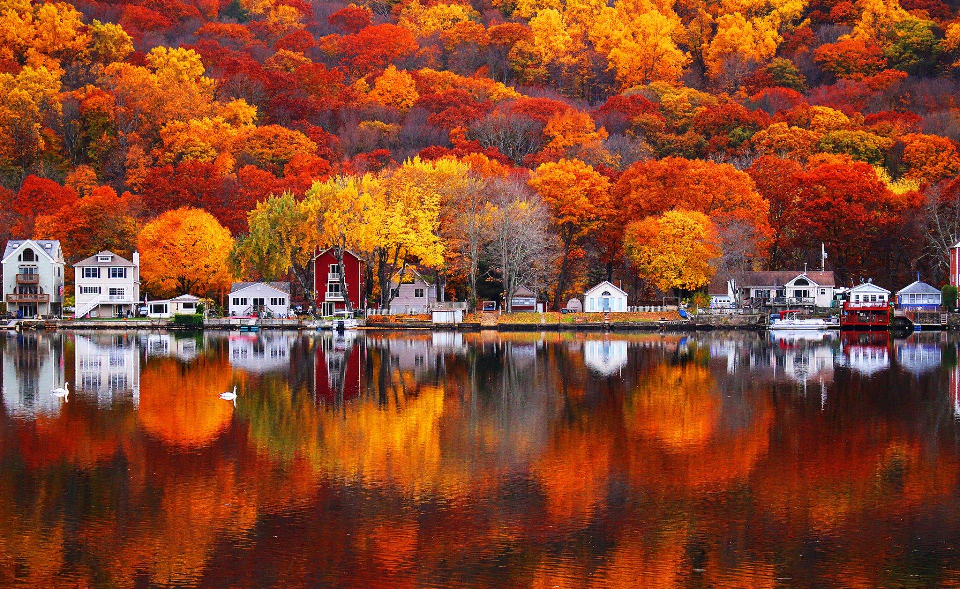 Photography - Reflection  Lake Fall Tree Village House Wallpaper