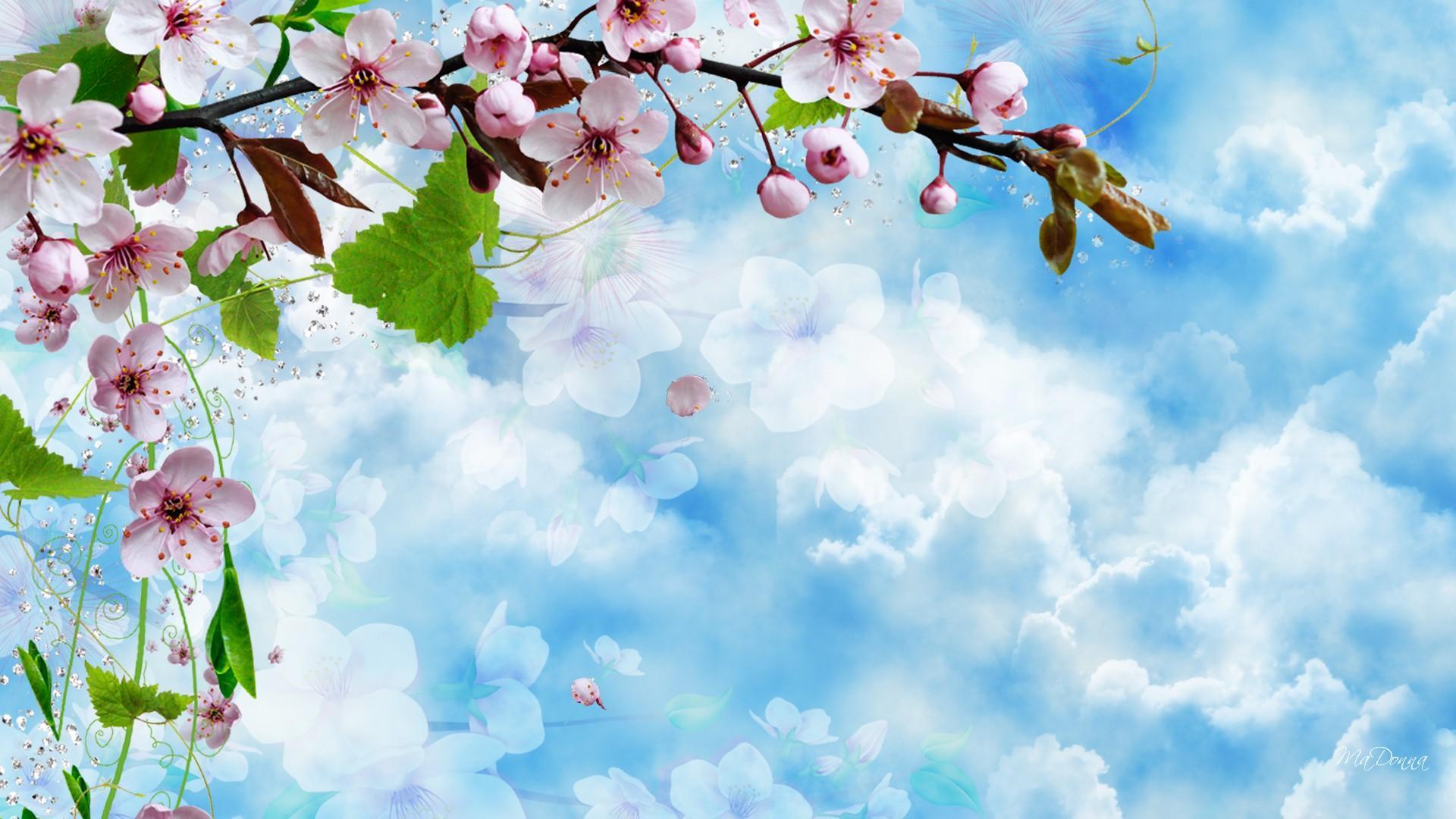Обои весна для рабочего стола небо