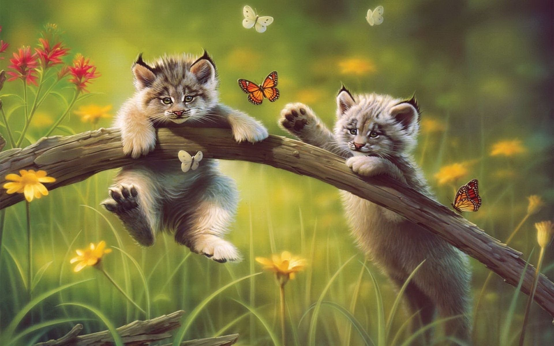 Popular Wallpaper Cat Butterfly - thumb-1920-690441  Pictures_569312 .jpg