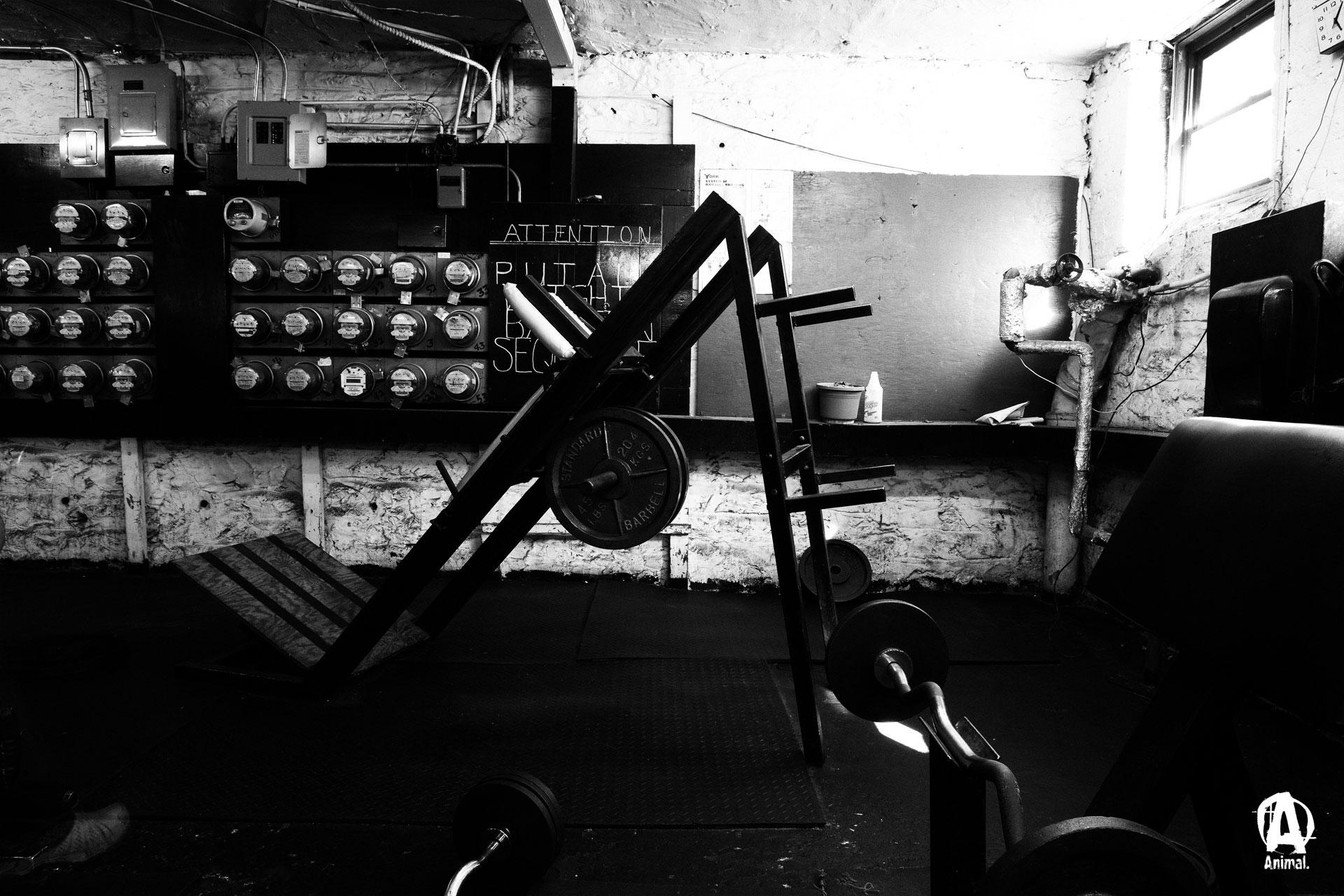 Gym Full HD Bakgrund and Bakgrund | 1920x1280 | ID:692041