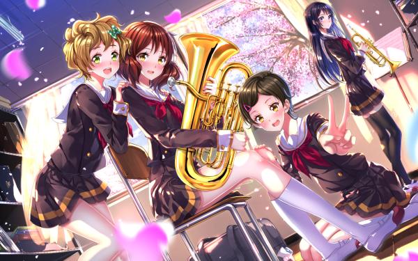 Anime Sound! Euphonium Kumiko Oumae Reina Kousaka Sapphire Kawashima Hazuki Katou HD Wallpaper | Background Image