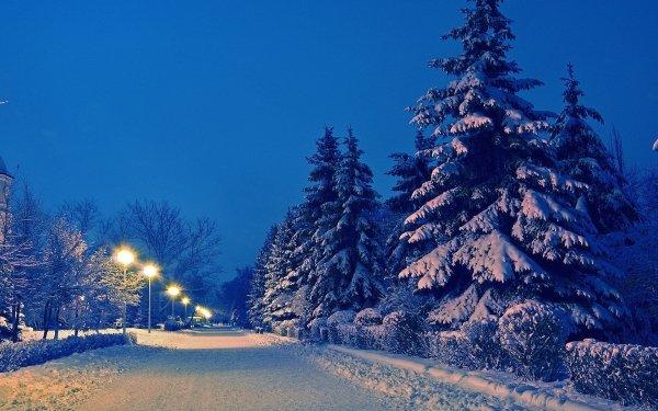 Fotografía Invierno Tierra Carretera Street Light Árbol Snow Fondo de pantalla HD | Fondo de Escritorio