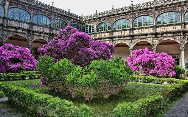 Man Made Garden Santiago Galicia Spain Flower HD Wallpaper | Background Image