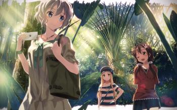 HD Wallpaper | Background ID:706817