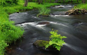 Earth - Stream Wallpapers and Backgrounds ID : 71822