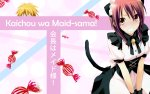 Preview Kaichou wa Maid-sama!