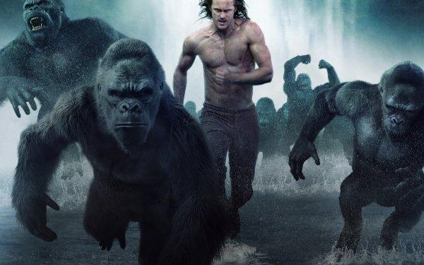 Movie The Legend of Tarzan Alexander Skarsgård Tarzan Ape Gorilla HD Wallpaper | Background Image