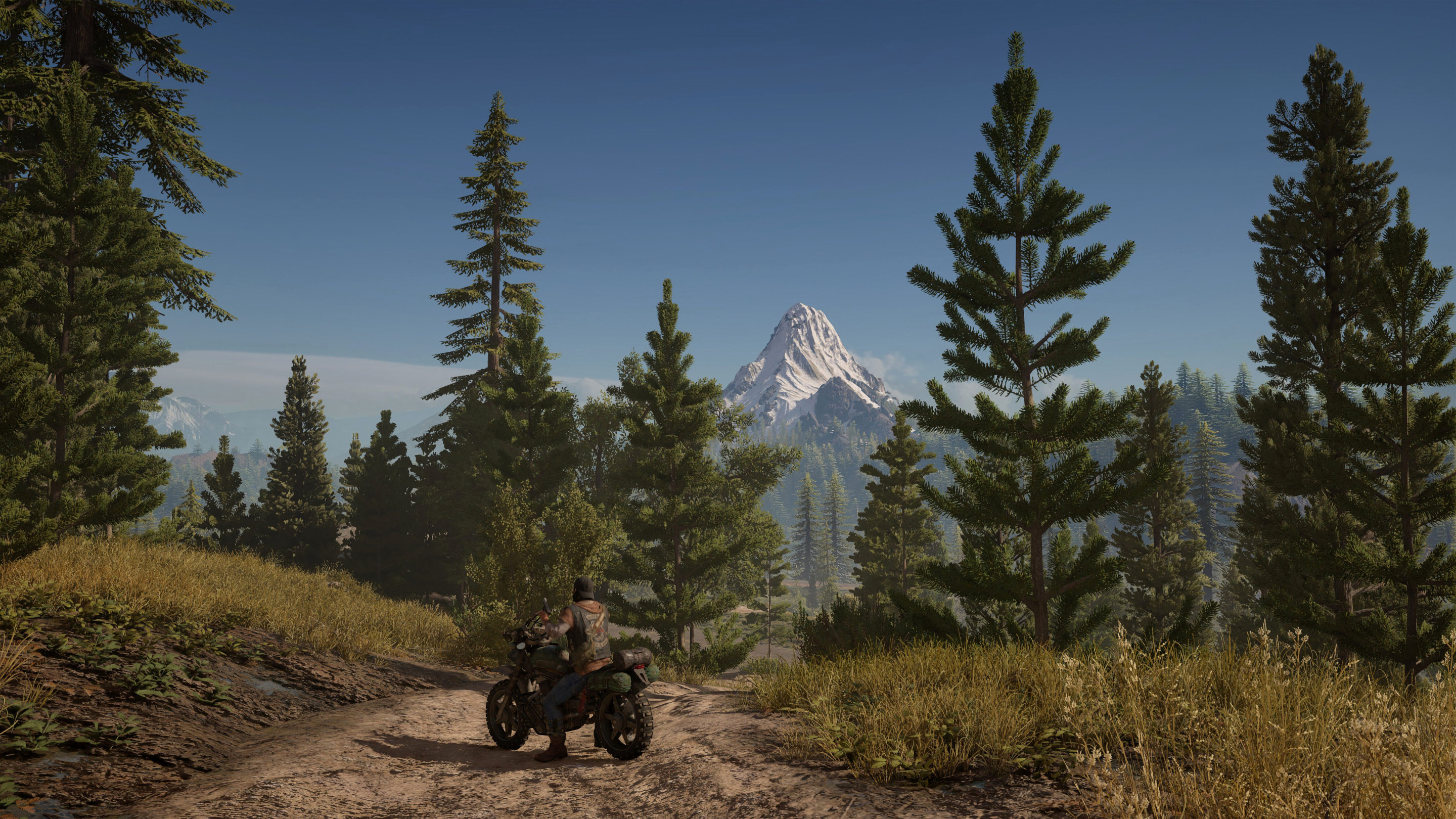 download days gone for pc