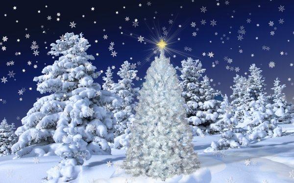 Día festivo Navidad Bosque Árbol Snow Snowfall Copo de nieve Estrella Fondo de pantalla HD | Fondo de Escritorio