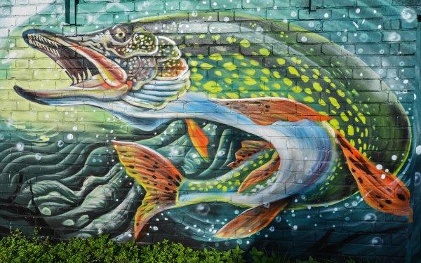 Artistique Graffiti Poisson Mur Brique Fond d'écran HD | Image