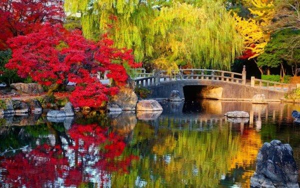Man Made Japanese Garden Bridge Tree Fall Colors Reflection HD Wallpaper | Background Image