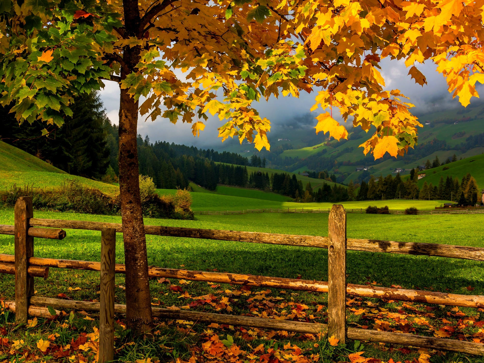 Autumn Landscape HD Wallpaper | Background Image ...