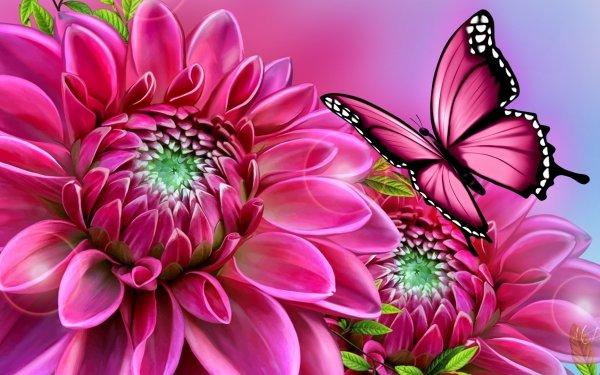 Artistic Butterfly Flower Dahlia Pink HD Wallpaper | Background Image