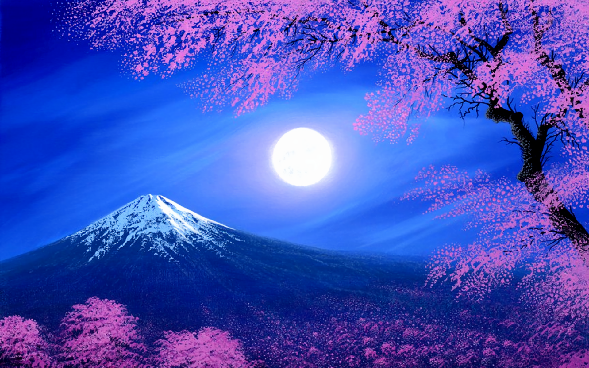 264 Cherry Blossom HD Wallpapers