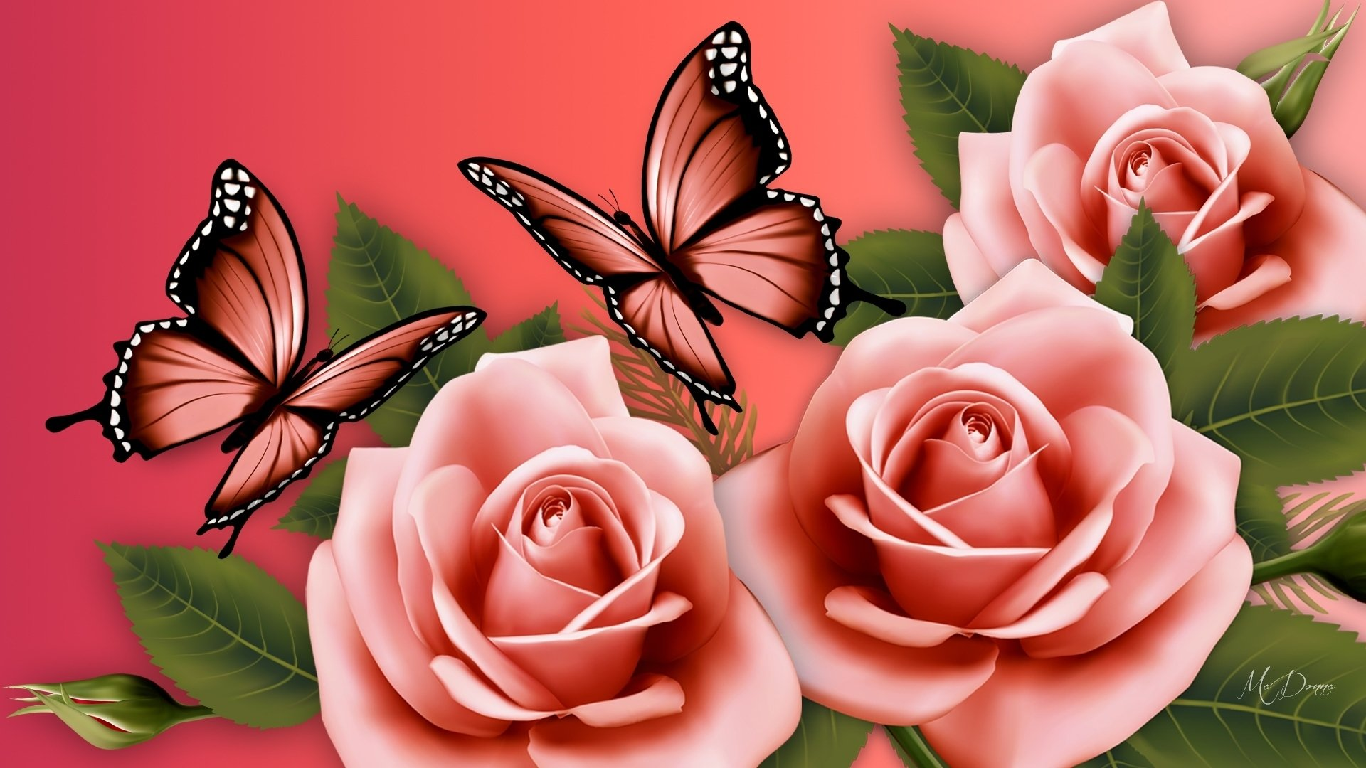Pink Butterflies And Roses Hd Wallpaper Background Image