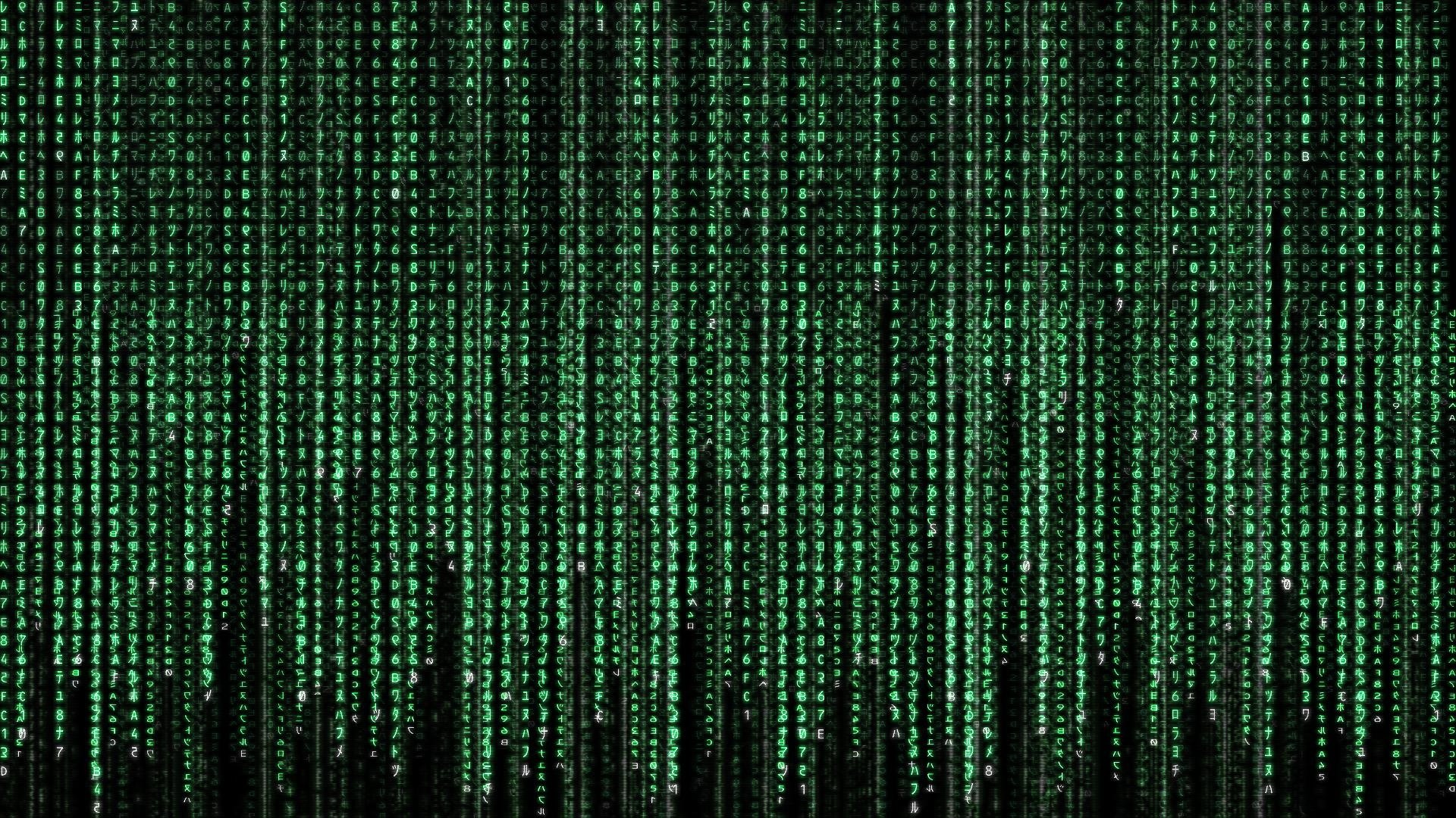 31 the matrix hd wallpapers | background images - wallpaper abyss