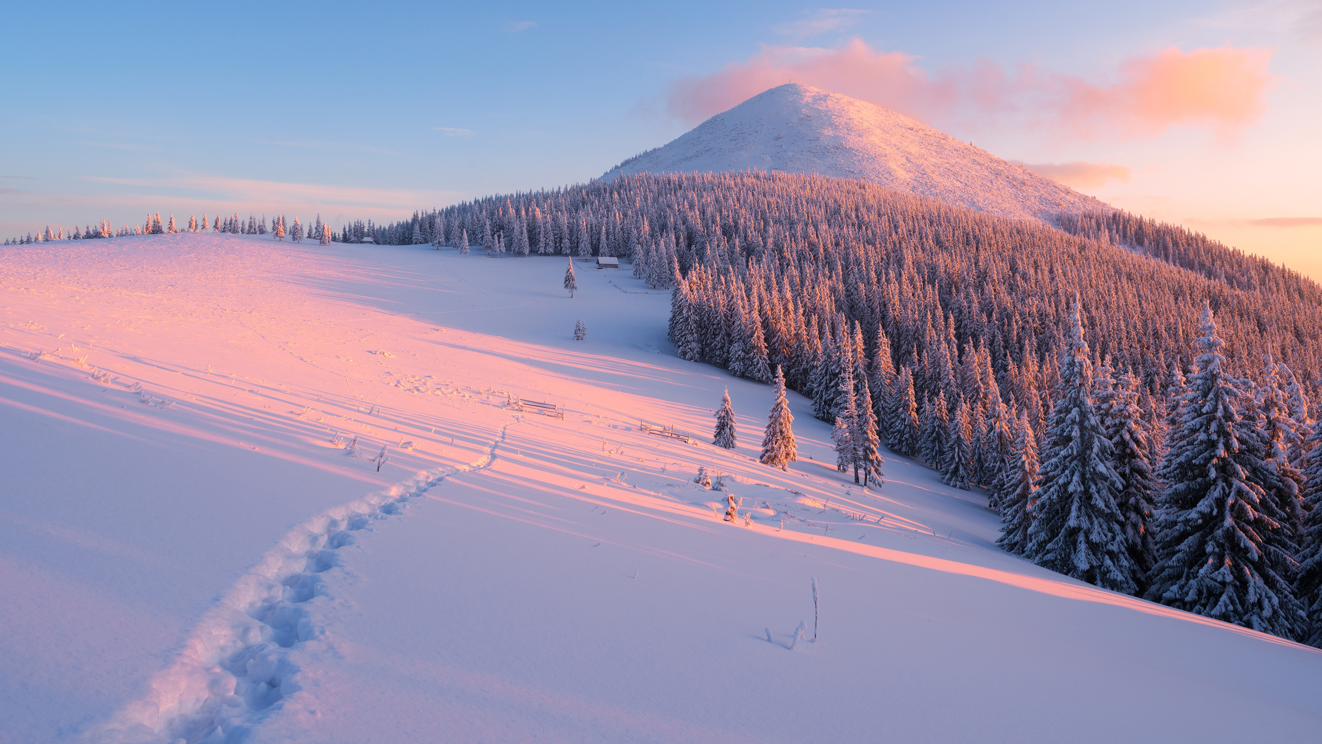 Winter 4k Ultra HD Wallpaper | Background Image | 4493x2527 | ID:783599 - Wallpaper Abyss