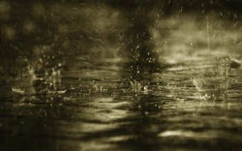 Photography - Rain Wallpapers and Backgrounds ID : 78780