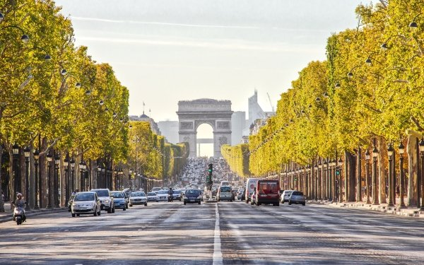 Man Made Arc De Triomphe Monuments Street Road Tree-Lined Paris France HD Wallpaper   Background Image