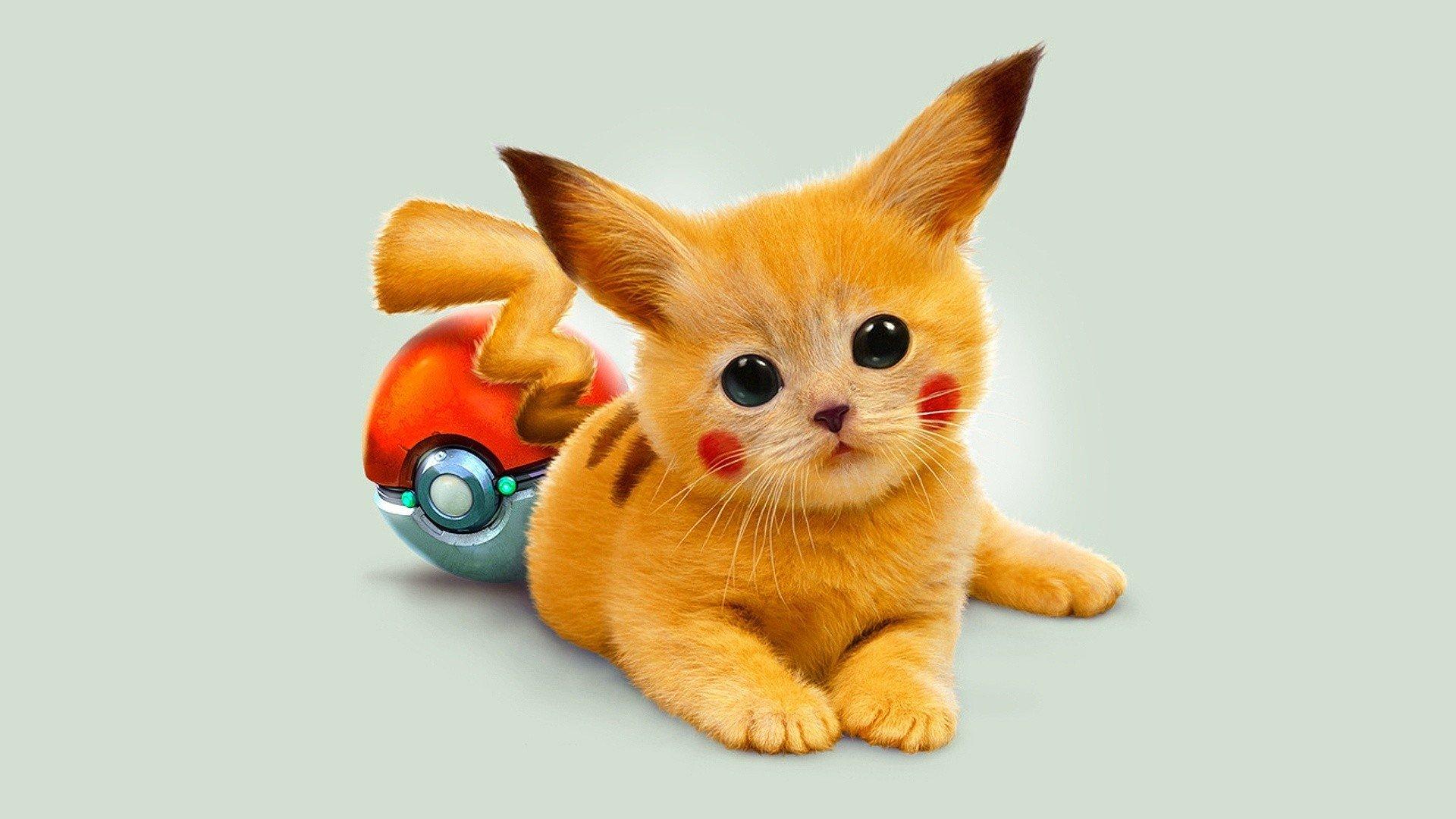 Anime - Pokémon  Kreskówka Pikachu Słodkie Tapeta