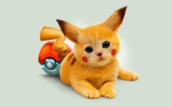 Anime Pokémon Cartoon Pikachu Cute HD Wallpaper   Background Image