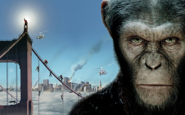 Movie Rise Of The Planet Of The Apes HD Wallpaper | Background Image