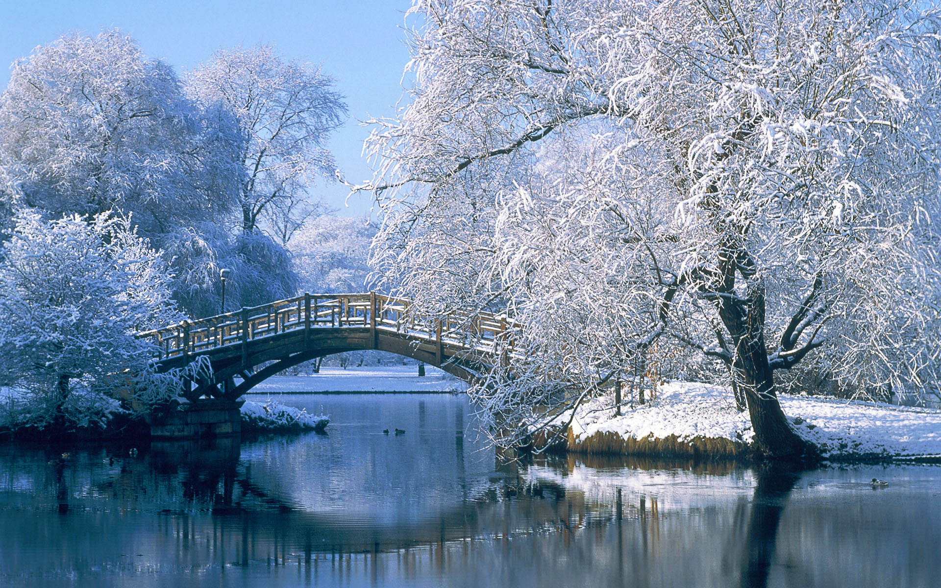 photography winter landscape pond water bridge tree reflection snow wallpaper
