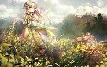 HD Wallpaper | Background ID:811567