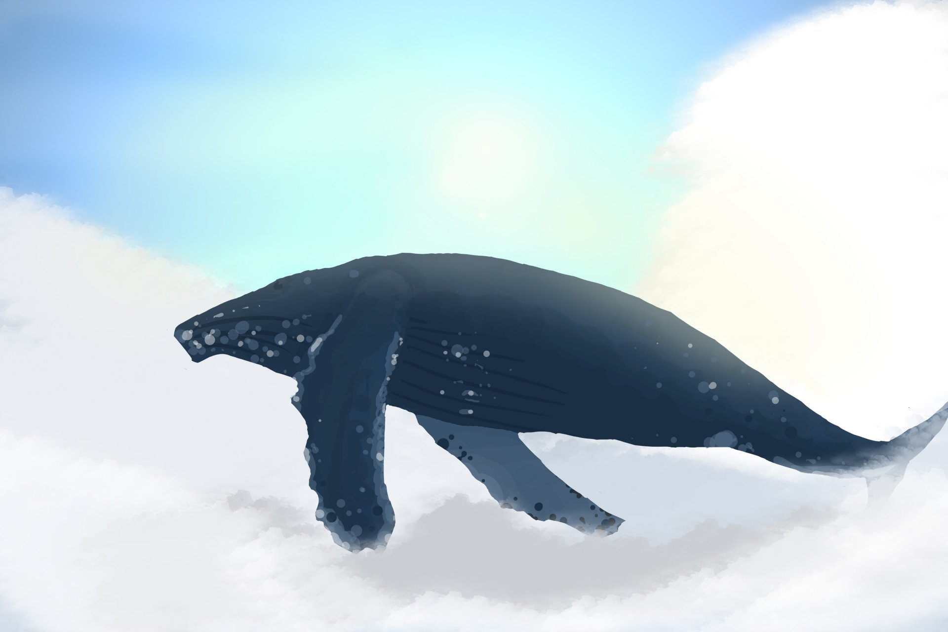 Artistic - Painting  Whale Wallpaper
