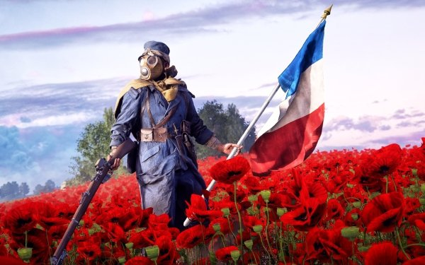 Video Game Battlefield 1 Battlefield Soldier Poppy Red Flower French Flag Gas Mask HD Wallpaper | Background Image