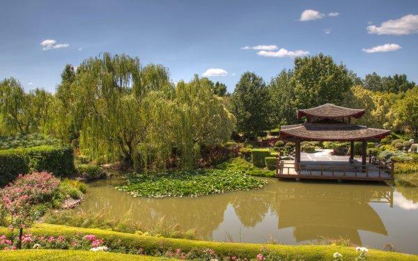Man Made Japanese Garden Park Pagoda Tree Pond HD Wallpaper | Background Image