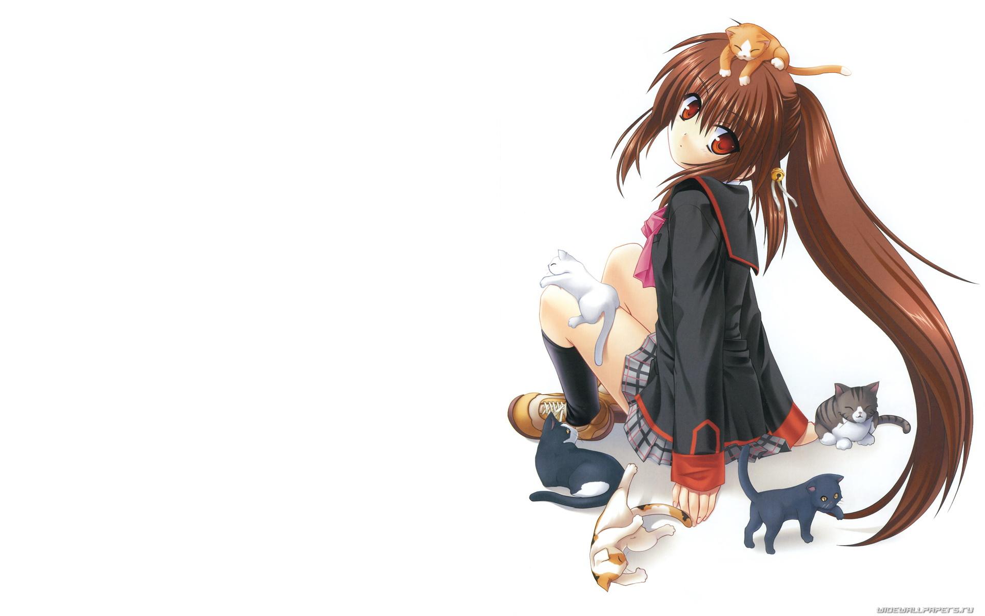 Image De Profil Manga Girl Cat