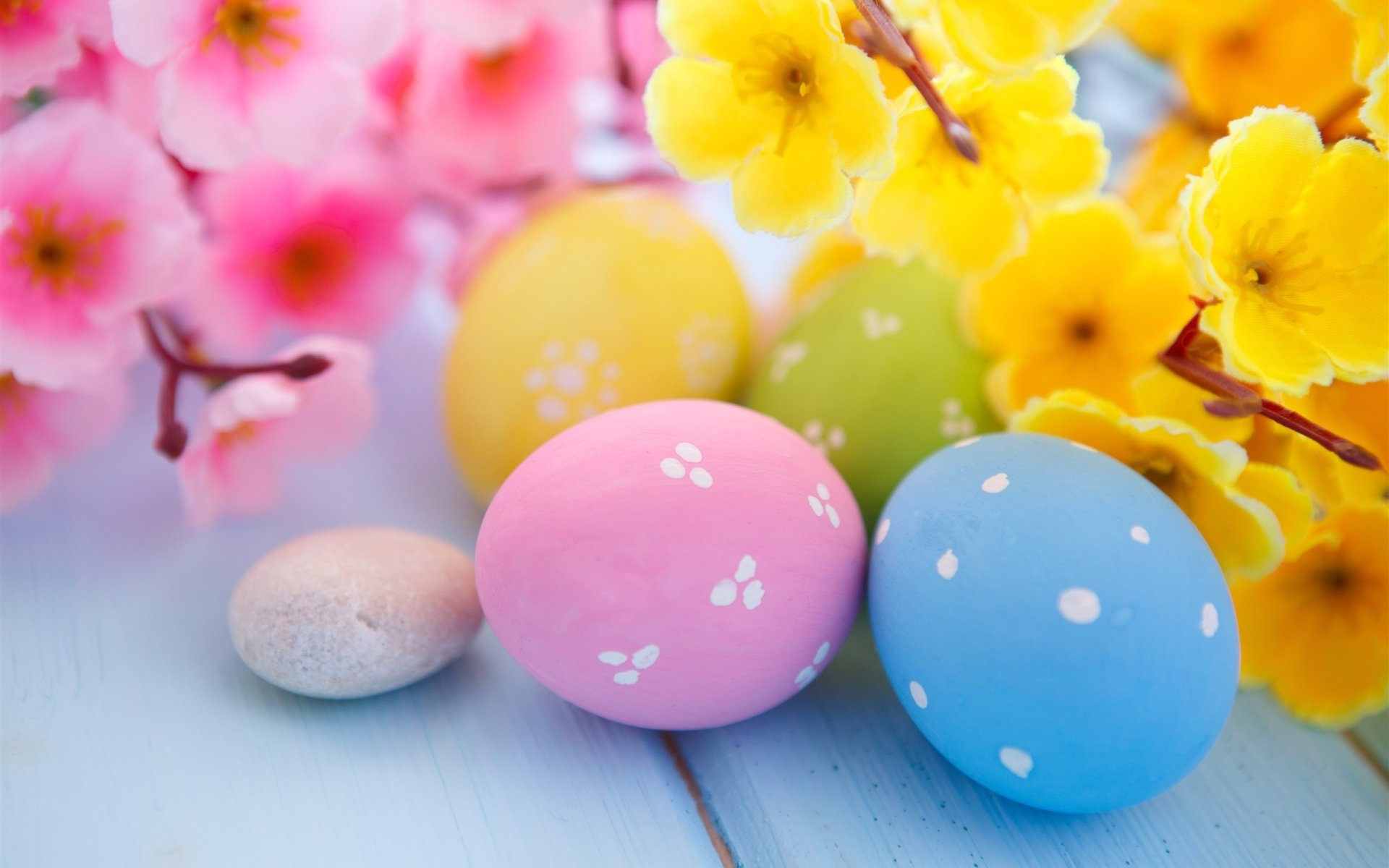 Holiday - Easter  Holiday Easter Egg Egg Colors Colorful Blossom Yellow Flower Pink Flower Wallpaper