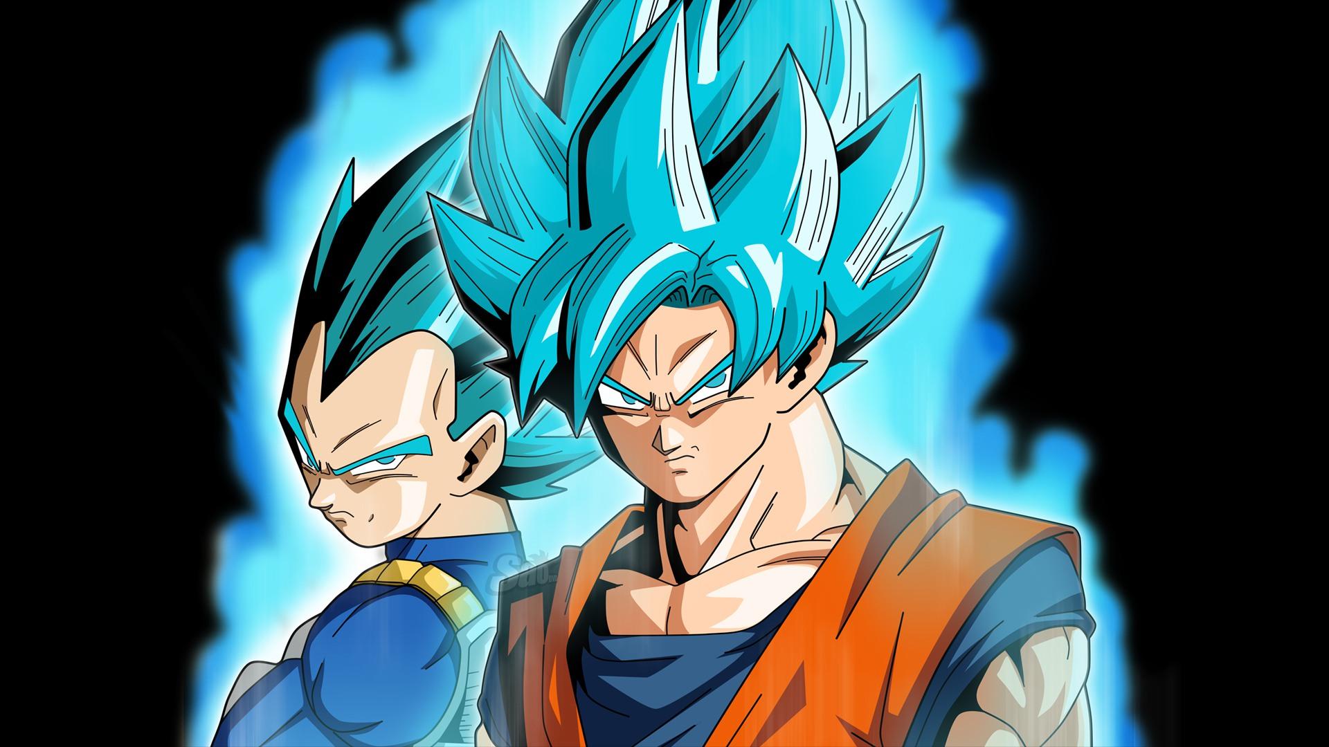 Goku and vegeta hd wallpaper background image - Dbz goku vegeta ...