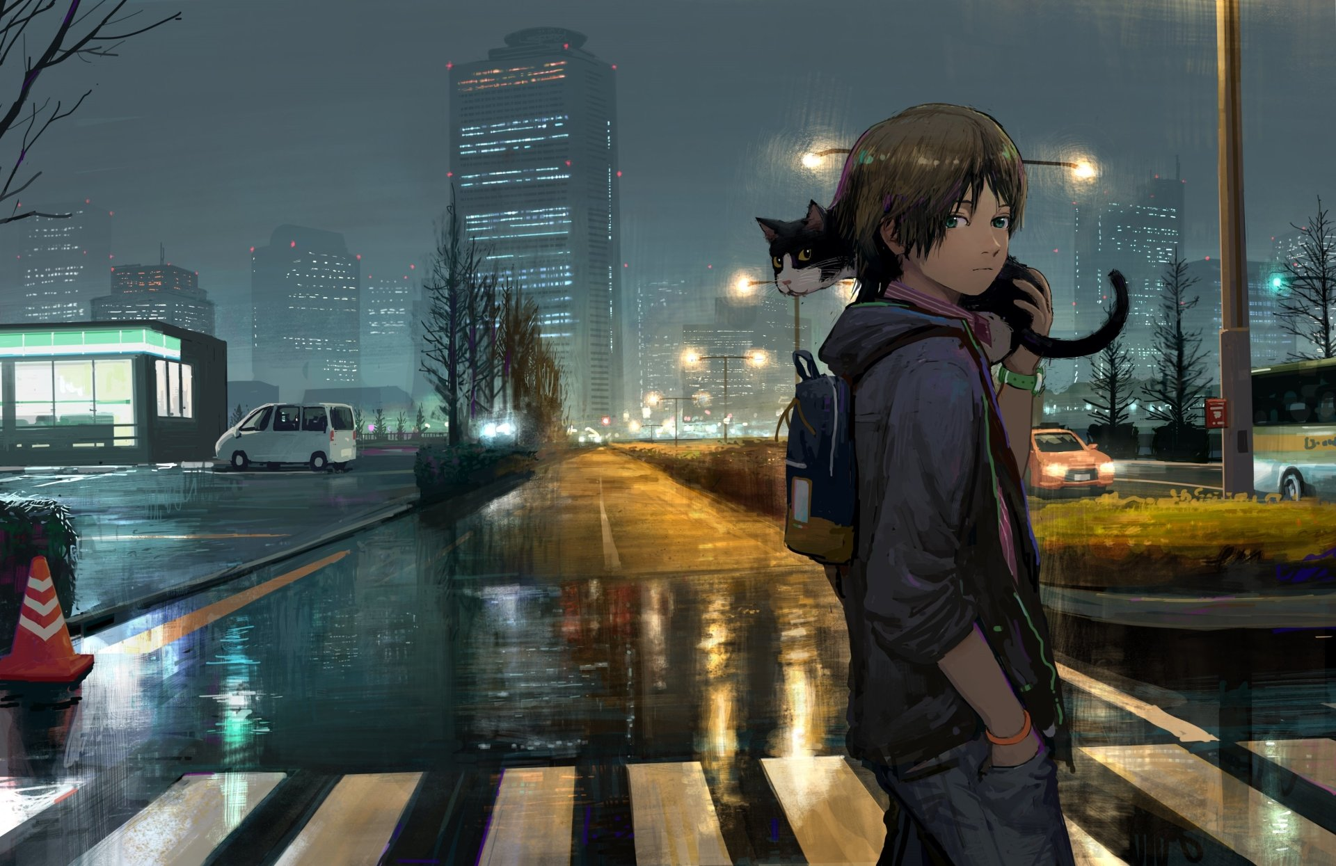 Anime - Original  Road Night Boy Rain Building Cat Green Eyes Wallpaper