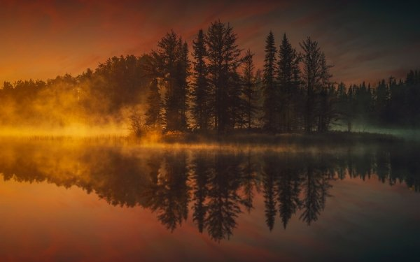 Earth Reflection Nature Lake Tree Fog Sunset HD Wallpaper | Background Image