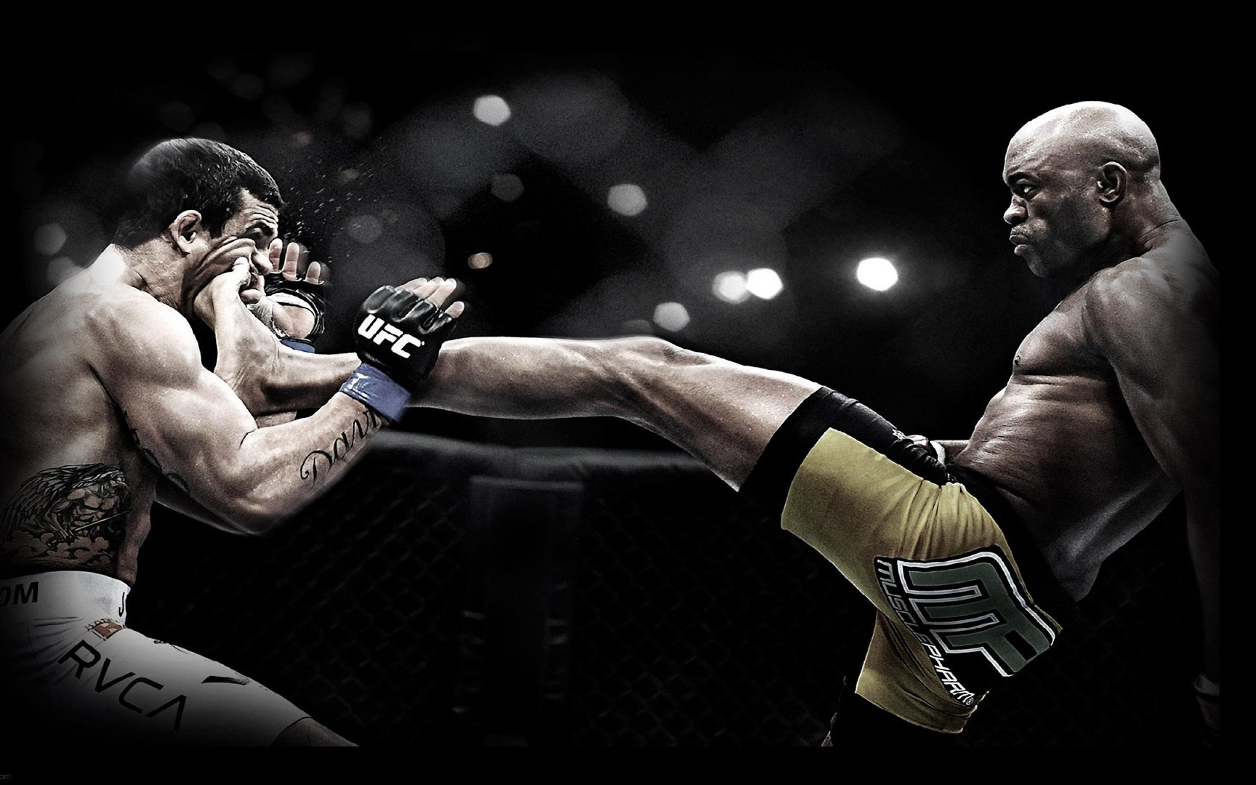 HD Wallpaper | Background Image ID:850871. 2560x1600 Sports UFC