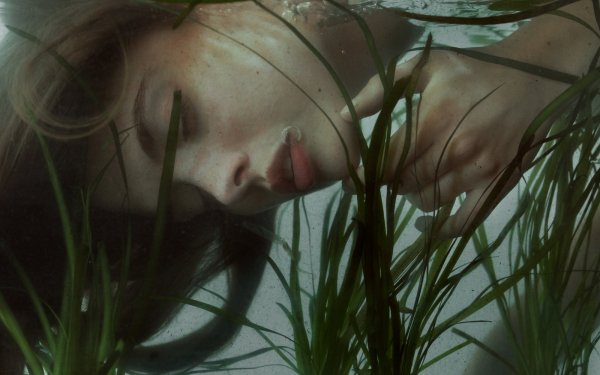 Women Artistic Girl Underwater Weed Bubble HD Wallpaper   Background Image