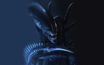 Movie - Alien Wallpapers and Backgrounds ID : 85302