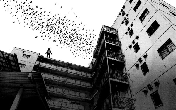 Anime Goodnight Punpun Building Flock Of Birds HD Wallpaper | Background Image