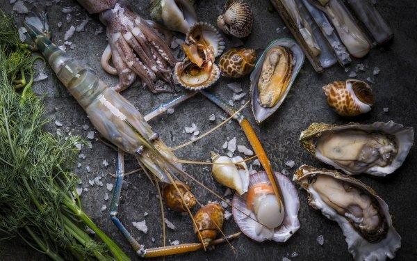 Food Seafood Still Life Mollusc HD Wallpaper | Background Image