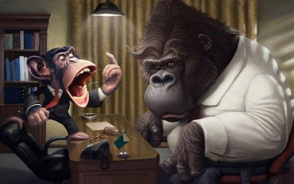 Humor Animal Monkey Ape HD Wallpaper | Background Image
