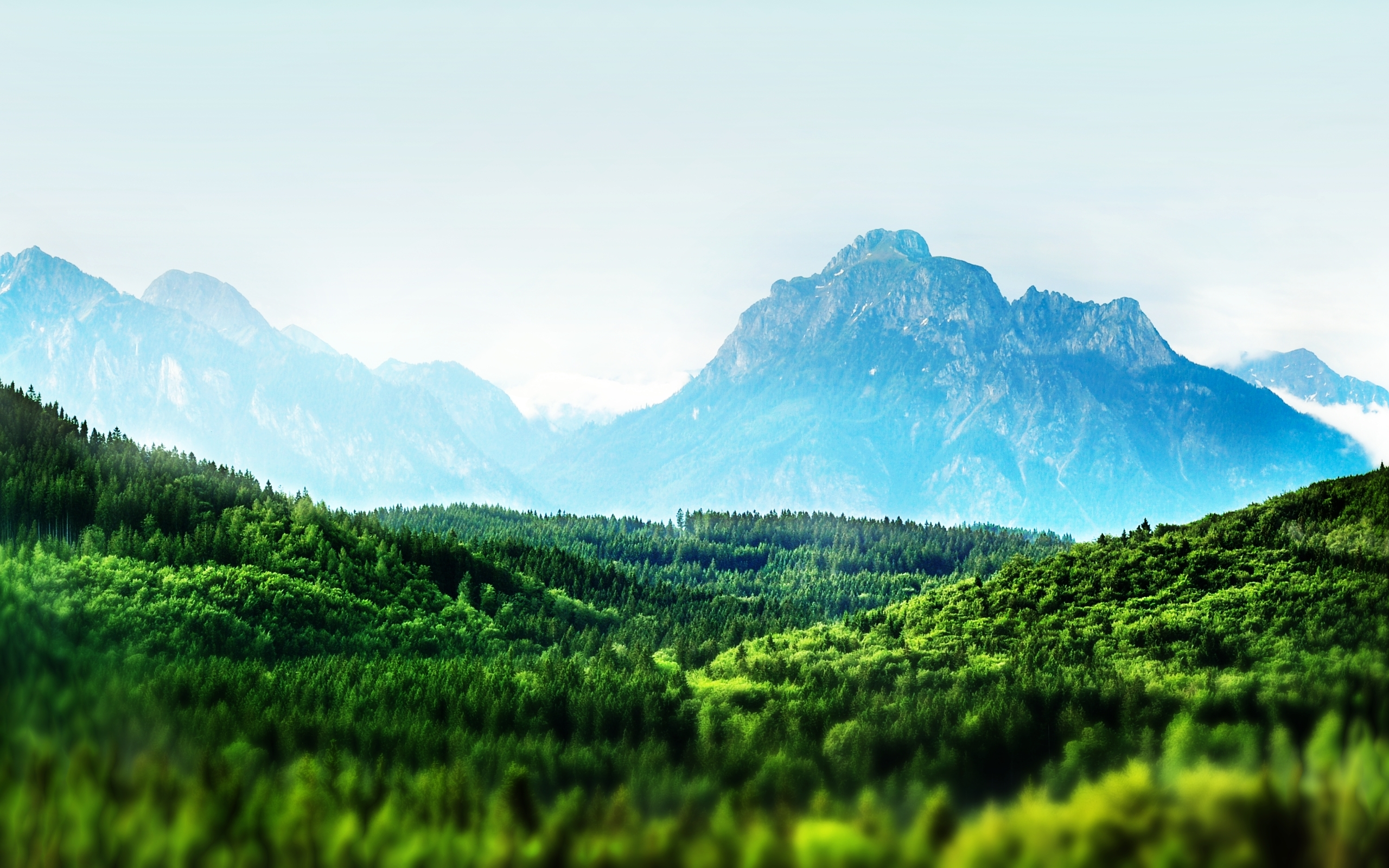 Earth - Artistic  Earth Mountain Forest Wallpaper